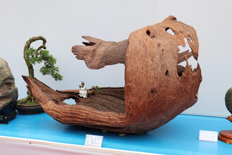 trien-lam-cay-canh-nghe-thuat-bonsai-12